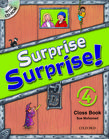 Surprise Surprise Level 4
